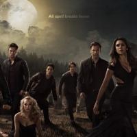 Le 10 Cose che Solo i Fan di The Vampire Diaries Capiranno
